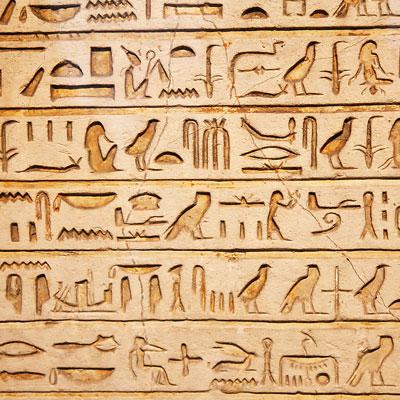 زبان مصری