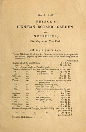 ترجمه کاتالوگ | صفحه ای از کاتالوگ عمده فروشی نهالستان پرینس، 1843.